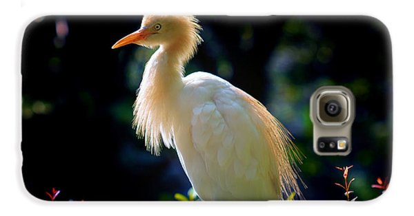 Egret With Back Lighting Galaxy S6 Case