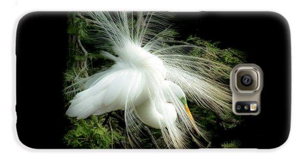 Elegance Of Creation Galaxy S6 Case by Karen Wiles