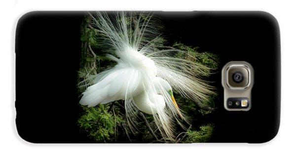 Elegance Of Creation Galaxy S6 Case