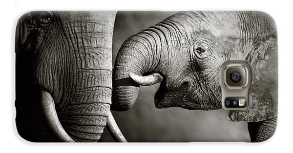 Elephant Affection Galaxy S6 Case by Johan Swanepoel
