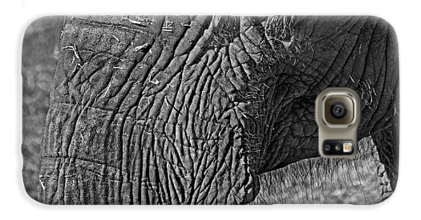 Elephant.. Dont Cry Galaxy S6 Case by Miroslava Jurcik
