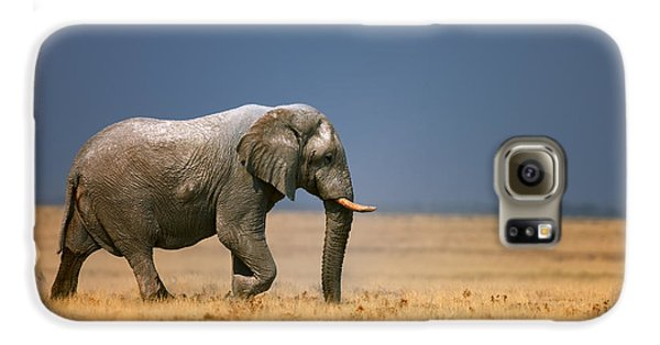Largemouth Bass Galaxy S6 Case - Elephant In Grassfield by Johan Swanepoel