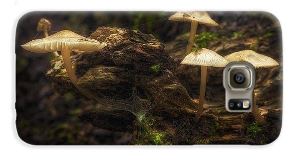 Magician Galaxy S6 Case - Enchanted Forest by Scott Norris