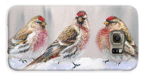 Snowy Birds - Eyeing The Feeder 2 Alaskan Redpolls In Winter Scene Galaxy S6 Case by Karen Whitworth
