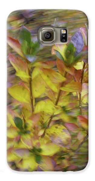 Autumn Azaleas 3 Galaxy S6 Case