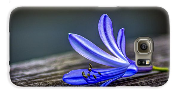 Lily Galaxy S6 Case - Fallen Beauty by Marvin Spates