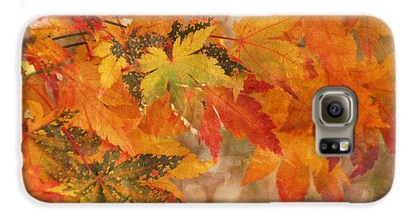 Falling Colors I Galaxy S6 Case