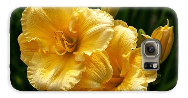 Fancy Yellow Daylilies Galaxy S6 Case
