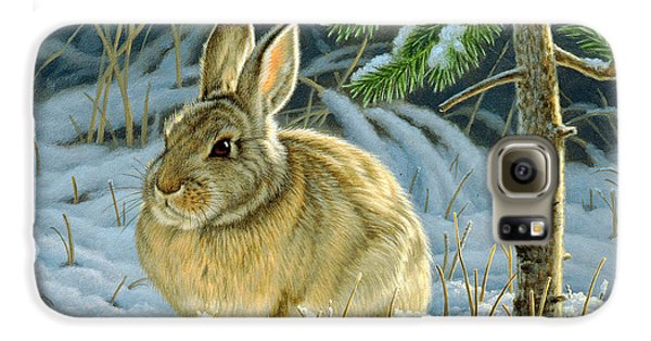 Rabbit Galaxy S6 Case - Favorite Place - Bunny by Paul Krapf