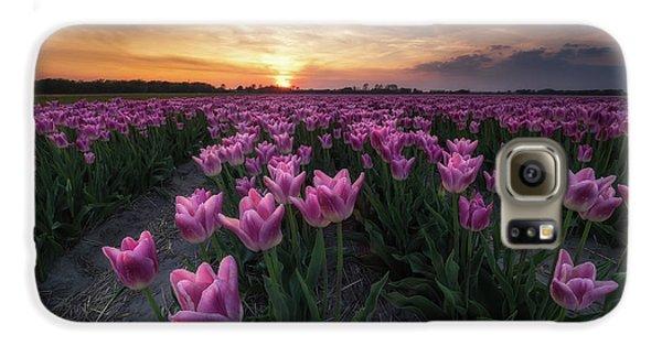 Tulip Galaxy S6 Case - Field Of Tulips by Amada Terradillos S.