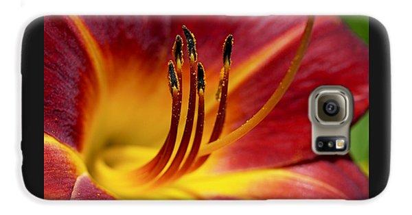 Fiery Lily Galaxy S6 Case