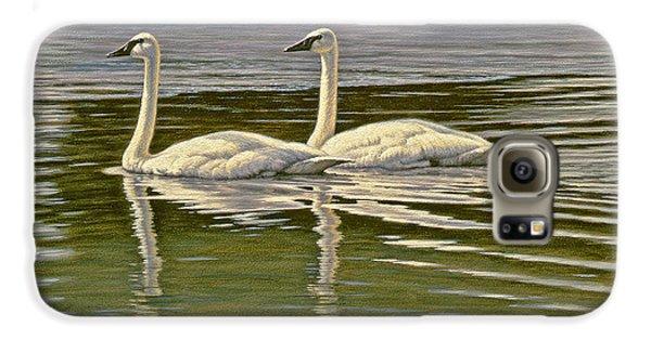 Swan Galaxy S6 Case - First Open Water - Trumpeters by Paul Krapf