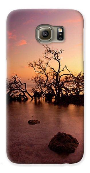 Mangrove Galaxy S6 Case - Florida Keys Sunset by Mike  Dawson
