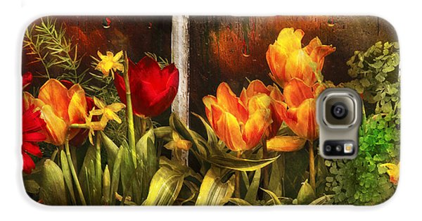 Garden Galaxy S6 Case - Flower - Tulip - Tulips In A Window by Mike Savad