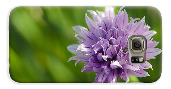 Flowering Chive Galaxy S6 Case