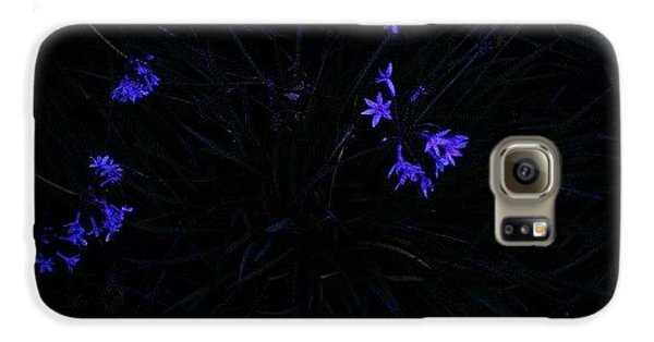 Blue Galaxy S6 Case - Flowers Like Stars by CML Brown