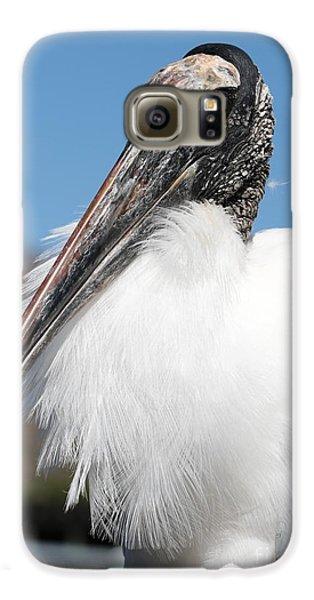 Fluffy Wood Stork Galaxy S6 Case by Carol Groenen
