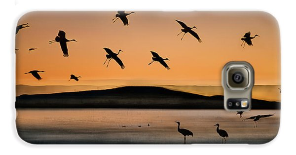 Fly-in At Sunset Galaxy S6 Case