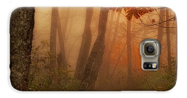 Foggy Autumn Galaxy S6 Case