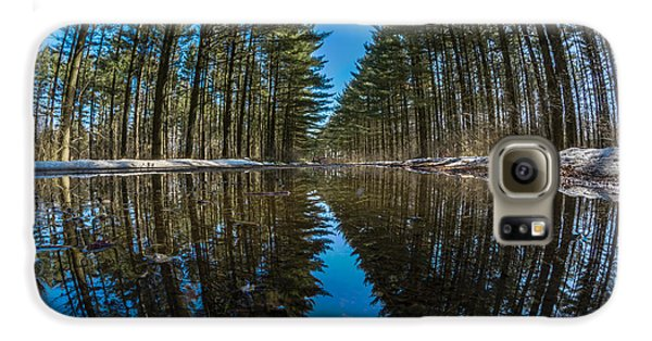 Forest Reflections Galaxy S6 Case