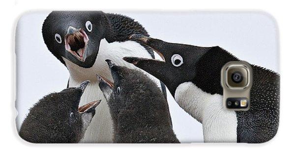 Four Penguins Galaxy S6 Case