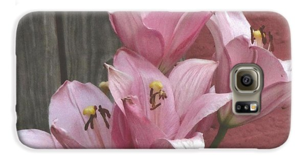Galaxy S6 Case featuring the photograph Four Pink Asiatic Lilies by Rod Ismay