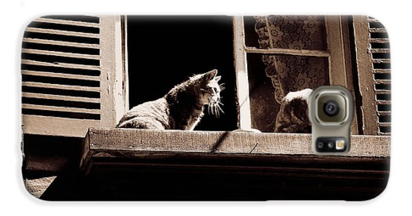 French Windowsill Cats In The Sun Galaxy S6 Case