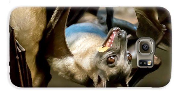 Fruit Bat Fedding Time Galaxy S6 Case
