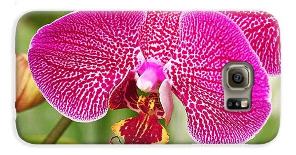 Fuchsia Moth Orchid Galaxy S6 Case by Rona Black