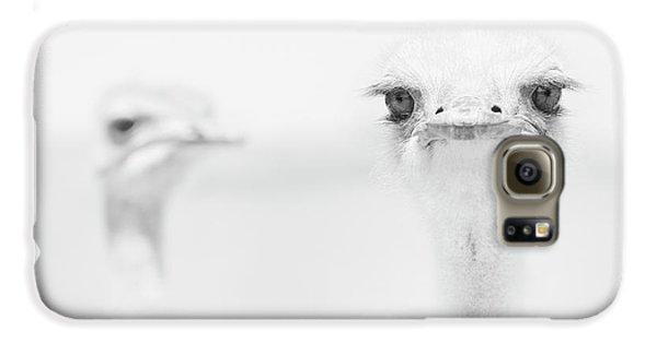 Funny Ostrich Galaxy S6 Case