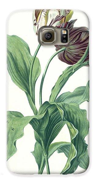Garden Galaxy S6 Case - Garden Tulip by Gerard van Spaendonck