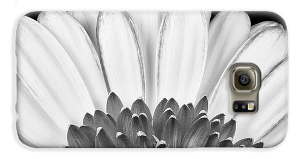 Daisy Galaxy S6 Case - Gerbera Rising by Adam Romanowicz