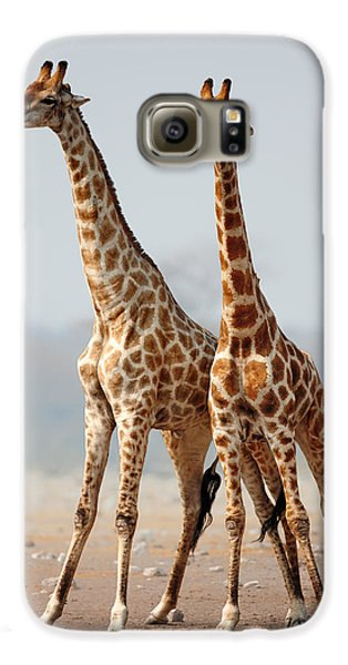 Giraffes Standing Together Galaxy S6 Case by Johan Swanepoel