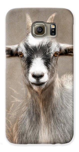 Goat Portrait Galaxy S6 Case