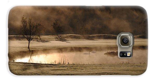 Swan Galaxy S6 Case - Gold And Copper by Kremena Nikolaeva
