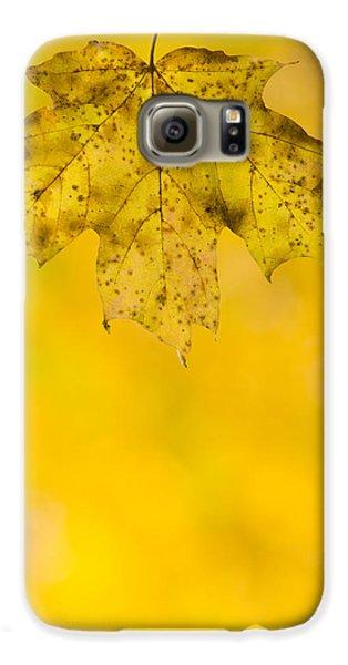 Galaxy S6 Case featuring the photograph Golden Autumn by Sebastian Musial