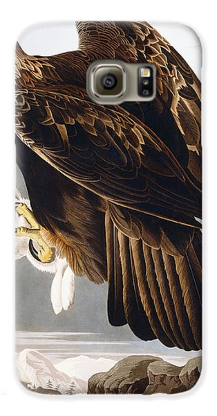 Golden Eagle Galaxy S6 Case by John James Audubon