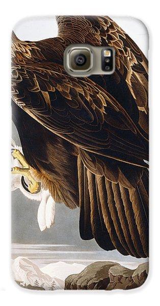 Golden Eagle Galaxy S6 Case by John James Audubon