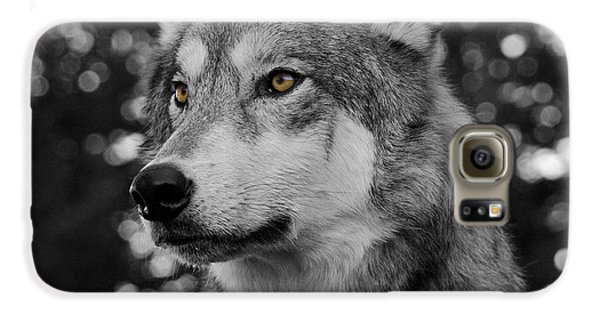 Golden Eyes Galaxy S6 Case