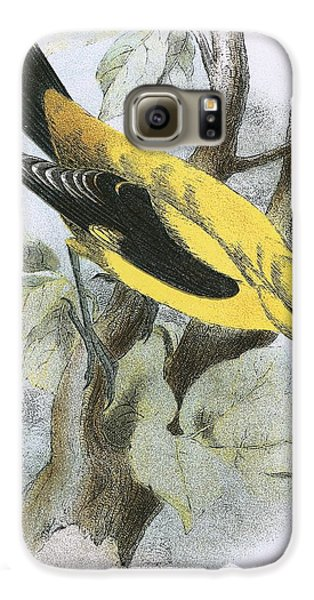 Golden Oriole Galaxy S6 Case