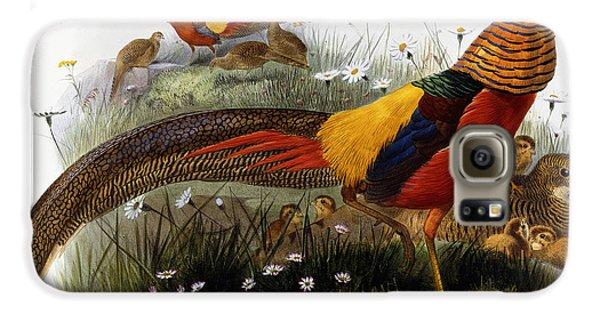Golden Pheasants Galaxy S6 Case by Joseph Wolf