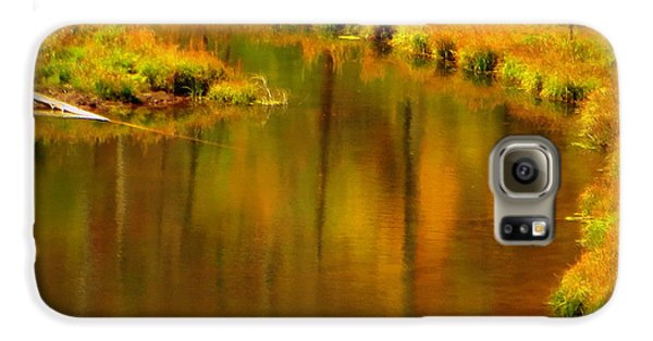 Galaxy S6 Case featuring the photograph Golden Reflections by Karen Shackles