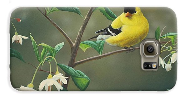 Finch Galaxy S6 Case - Goldfinch And Snowbells by Peter Mathios