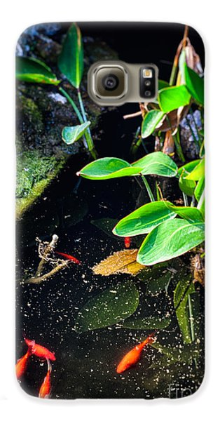 Galaxy S6 Case featuring the photograph Goldfish In Pond by Silvia Ganora