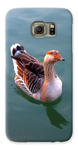Goose Galaxy S6 Case by Marc Philippe Joly