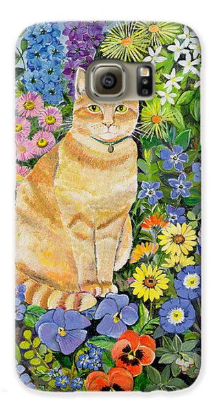 Garden Galaxy S6 Case - Gordon S Cat by Hilary Jones