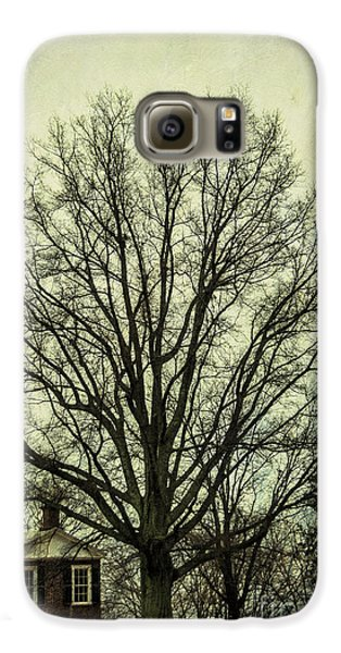 Grand Old Tree Galaxy S6 Case