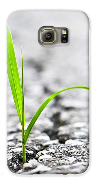 Grass In Asphalt Galaxy S6 Case