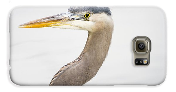 Great Blue Heron Galaxy S6 Case