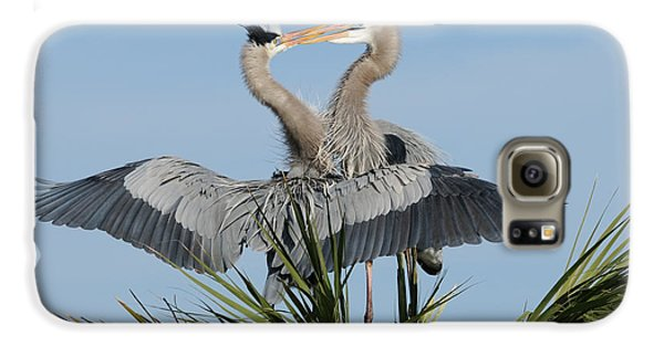 Great Blue Herons Courting Galaxy S6 Case